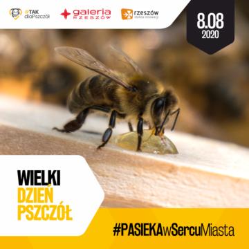 8 sierpnia Dzień Pszczół